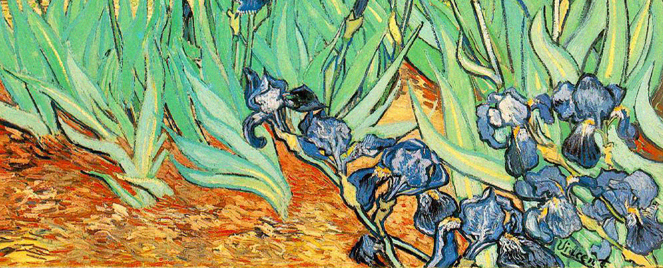 Zoom in on a painting by Van Gogh painted in Saint Rémy de Provence